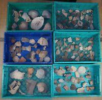 Haniwa ceramic archeology findings antique Japanese I-V cent findings