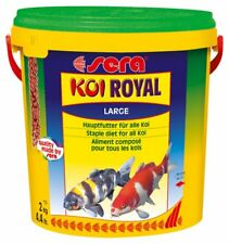 Sera Koi royal MANGIME CARPE LARGE 10 l (2000 g) Secchio STAGNO LAGHETTO 2kg
