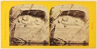 Leone Da Lucerna Suisse Foto A. Braun Stereo PL27L1n Vintage Albumina c1865