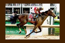 ORB - USA 2013 Kentucky Derby winner modern Digital Photo Postcard