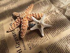 White Knobby Starfish Clip Mermaid Look