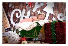 Newborn Christmas Digital Background Backdrop Photography