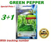 80 seeds Green Finger Pepper Sili Pang Sinigang Hot spicy VEGETABLE