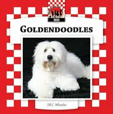 Goldendoodles Checkerboard Animal Library Dogs