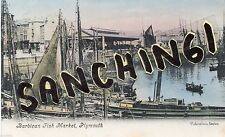 Plymouth Pre - 1914 Collectable Devon Postcards