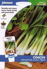 Verdura-Kings Seeds-cipolla-Brunswick rosso-PITTURA Pack