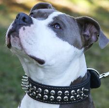 """Genuine Leather Dog Spiked Collar 18""""-22"""" neck 1.75"""" wide  Mastiff Bullterrier"""