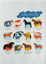 Breeds of Horse -Large Cotton Tea Towel by Half a Donkey