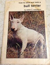 How To Raise And Train A Bull Terrier By Edwin Rosenblum