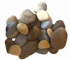 River stone tumble 5kg |aquarium sand gravel rock chip pebbles decoration reef|