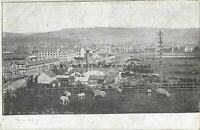 Devon Barnstaple General View Vintage Postcard 20.2