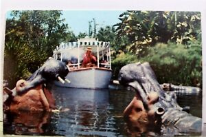 Disneyland Jungle Cruise Adventureland Postcard Old Vintage Card View Standard