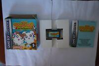Hamtaro Ham-Ham Heartbreak GameBoy Advance nintendo Game Boy GBA EUR PAL clean