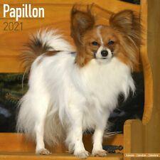 Papillon Calendar 2021 Premium Dog Breed Calendars