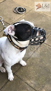 Real leather Dog Muzzle for Staffordshire Bull Terrier Staffy , Staffie