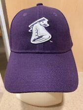 Lehigh Valley Ironpigs, Phillies Purple Liberty Bell Logo Baseball Hat Cap, New