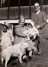 Old photo Samoyed American Eskimo German Spitz Husky dog w baby and family