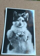 Vintage Cat Postcard. Black & White cat. Flowers. Bow. Not mailed.