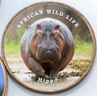Somaliland 1 shilling 2018 UNC African Hippo unusual coin