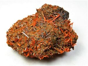 MINERALS : CROCOITE CRYSTALS ON ALL SIDES FROM AUSTRALIA