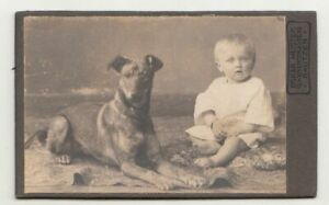 CdV Foto Baby mit Hund um 1910 ! (F2524