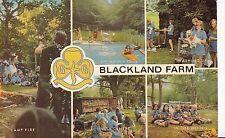 CK36. Postcard.  Blackland Farm Activity Centre. Sussex.