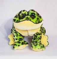 Webkinz/Ganz Green Yellow Bull Frog Stuffed Animal Plush-no code Great Condition