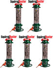 5- Pack Brome Squirrel Buster Plus Bird Feeder w/ Cardinal Perch Ring 1024 -