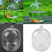DIY Hanging Transparent Glass Vases Fishbowl Fish Tanks Handmade Aquarium Decor