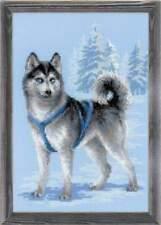 Stickpackung Stickbild sticken 26x38 cm Husky Hund Dog Winter Schlittenhund