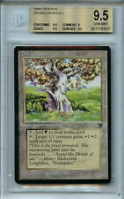 MTG Legends Pendelhaven BGS 9.5 Gem Mint Card Magic Amricons 2637