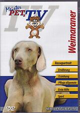 Weimaraner - Meister PETz TV *DVD*NEU* Ratgeber - Hund