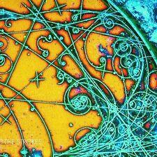 THE STROKES rare Alternative Rock cd 11 songs 2001