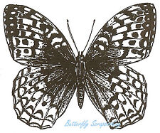 Great Spangled Butterfly Wood Mounted Rubber Stamp Northwoods Stamp CC7284 New