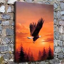A0441-Bald Eagle In Flight Home Decor HD Canvas Print Picture Wall Art Painting