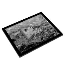 A3 Glass Frame BW - Autumn Maple Leaf Nature Weather  #37523
