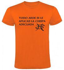 Camiseta Heroes del Silencio todo arde hombre, tallas y colores