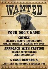 "BLACK LAB DOG Wanted Poster Fridge Magnet 3 1/2"" X 5"""