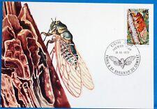 LA CIGALE ROUGE   FRANCE  CPA Carte Postale Maximum  Yt 1946 C