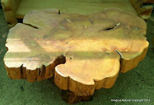 Large Naturally Unique Cypress Tree Trunk Handmade Coffee Table - Log Rustic