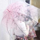 Auto Open Clear Transparent Cherry Blossom Bubble Umbrella POE Dome Parasol
