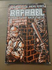 Tmnt Raphael #1 Micro Series/ first Appearance Casey Jones