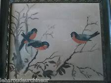 Beau tableau année 1904 signé Yorke lovely bird painting usa england
