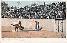 1904 Mexican Bull Fight Tinted Postcard, Undivided Back