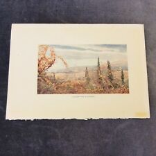 Vintage Book Print - A Distant View of Florence