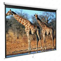 "120"" 1:1 Manual Pull Down Projection Screen Home HD Movie Theater Matte White"