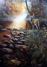 "Jim Hansel Beside Still Waters Deer Buck Art Print Signed and Numbered 19"" x 29"""