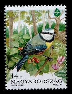 Vögel. Blaumeise. 1W. Ungarn 1995