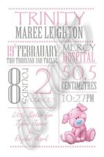 birth announcement baby girls details personalised photo gift nursery wall art