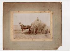 Photograph of haymaking by Edinburgh photographer (C29434)